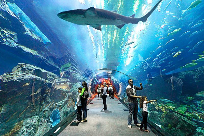 Cheapest countries Nigerians can visit for tourism : Dubai underwater aquarium